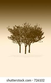 beige toned Trees