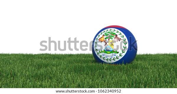 Belize Belizean flag soccer ball lying in grass, isolated on white background. 3D Rendering, Illustration.