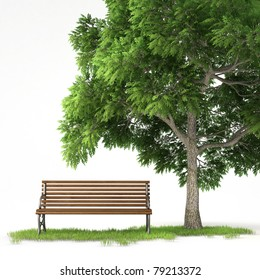bench under a tree isolated on white background with clipping path
