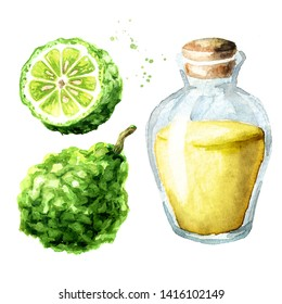 Bergamot fruit and essential oil set with fruit and glass bottle. Watercolor hand drawn illustration, isolated on white background