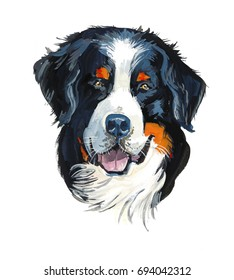 Bernese Mountain Dog. Portrait dog. Gouache hand drawn illustration.