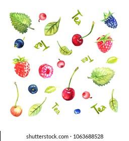 Berries and leaves for berry-herbal vitamin tea, cherries, raspberries, blueberries, lemon balm, currants, blackberries, cranberries, brutnik, strawberries.