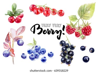 Berries watercolor set illustration isolated on white background. Redcurrant, blackcurrant, lingonberry, blueberry.