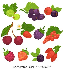 Berry fruits  isolated icons. Flat set of cherry and blueberry, strawberry and raspberry, forest blackcurrant and red currant, briar, cranberry and gooseberry. Design elements for jam or juice