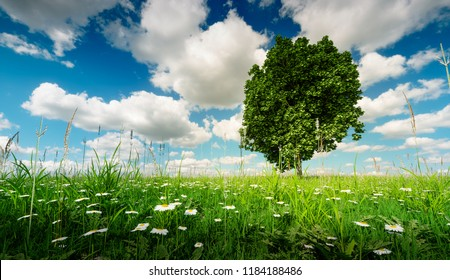 The best place for your new home. Land for sale concept. 3d illustration of a tree in a fresh spring meadow under a beautiful blue cloudy sky.