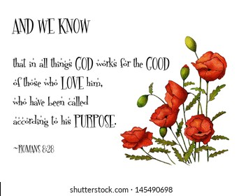 Bible Verse With Red Poppies: Passage from Romans 8:28, along with a freehand drawing of red poppy flowers.  God works for our good.
