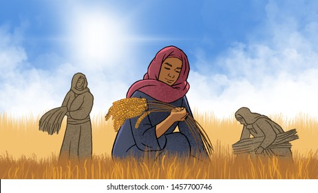 Biblical illustration : Ruth to pick up grain from a harvest field