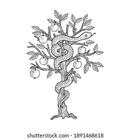 biblical serpent snake on apple tree sketch engraving raster illustration. T-shirt apparel print design. Scratch board imitation. Black and white hand drawn image.