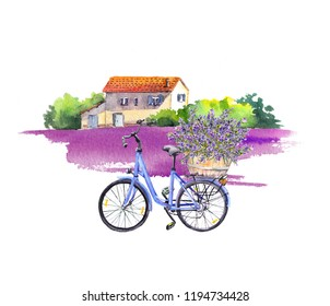 Bicycle with lavender flowers bouquet in basket, rural landscape with old house and violet lavender field. Watercolor