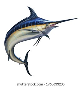 Big black marlin jumps out of the sea. Black Swordfish extreme fishing on the high seas. Holidays in the tropics and hobbies.