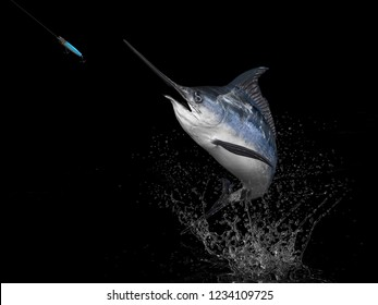 Big catch of  Blue Marlin Sword fish  in black background with splashes hooked by popper bait 3d render