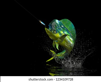 Big catch of Mahi mahi dolphinfish in black background with splashes hooked by popper bait 3d render