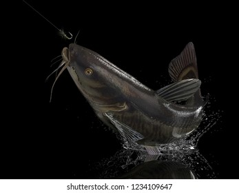 Big catfish in black background with splashes hooked by fly fishing lure bait 3d render