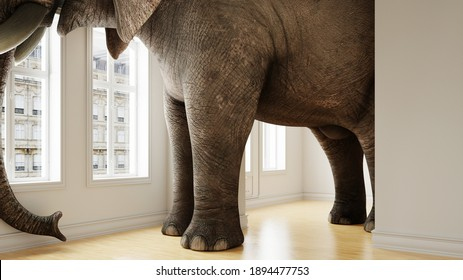 Big elephant in the small room as a funny space problem concept (3d rendering)