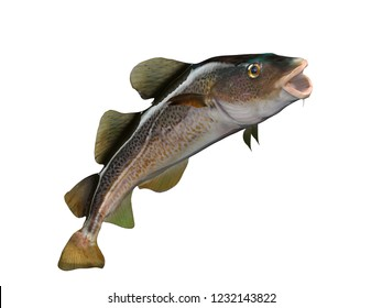 Big mouth cod fish upwards pose 3d render isolated