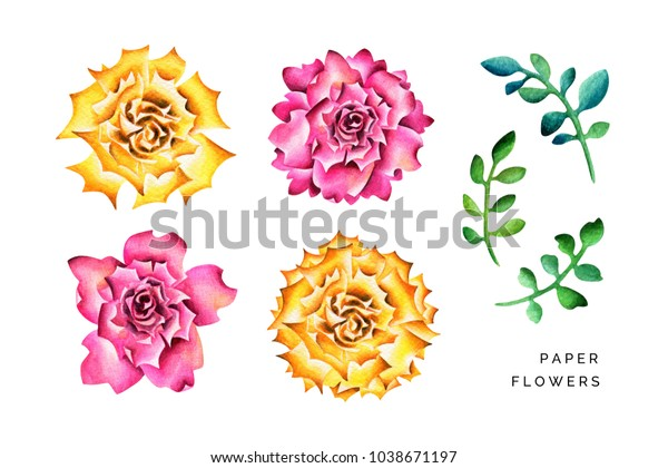 Big Paper Flowers Branches Watercolor Illustration Stock