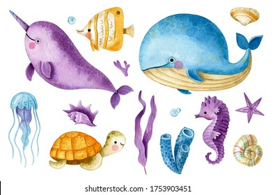 Big sea collection with cute whale, narwhal, fish, seahorse, turtle, jellyfish, seashells and seaweeds. Cute watercolor underwater set. Underwater creatures collection in cartoon style.