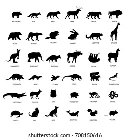 Big set of animals silhouette. Black animals pictogram