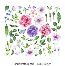 Big set of Flowers (roses, hydrangea, apple tree flowers), leaves, petals and butterflies  isolated on white background. Art watercolor illustration.