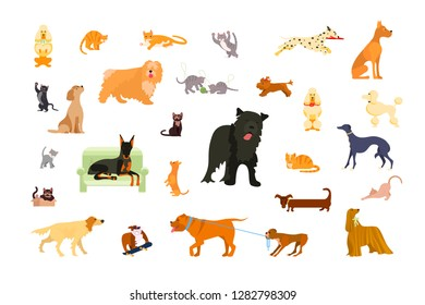 Big set of pets in various poses. Cats and dogs bundle. Rastered copy