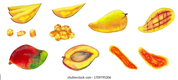 Big set of realistic red and yellow mango. Colorful whole fruits, half parts, pieces, dried chips and slices. Watercolor hand painted isolated elements on white background.