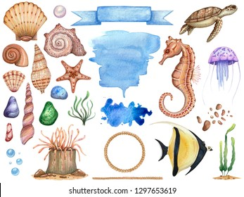 Big set of watercolor illustrations of sea subject isolated. A collection for scrap booking