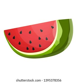 Big slice watermelon icon. Cartoon of big slice watermelon icon for web design isolated on white background