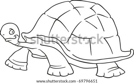 Big Turtle Coloring Book Stock Illustration 69796651 - Shutterstock