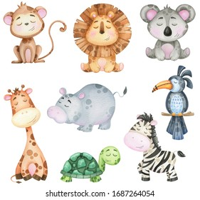 big watercolor set of tropical animals  on white background