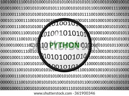 Binary Code Python Magnifying Lens On Stockillustration 361900346