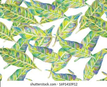 Bio Jasmin Seamless Pattern. Watercolor Citrus Orange Blooming Flowers and Leaves. Vibrant Sakura and Jasmine Print. Green and Aqua Menthe Summer Vintage Background. Floral Ayurveda Pattern.