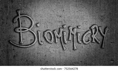 Biomimicry - Abstract Illustration