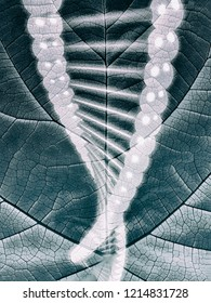 Biomimicry - Genetics - Nature and Biotechnology - Abstract Illustration