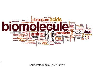 biomolecule word cloud