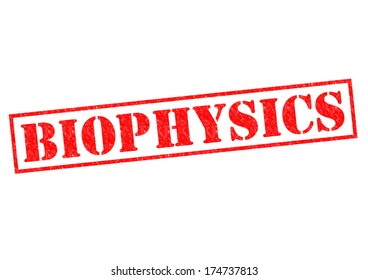 BIOPHYSICS red Rubber Stamp over a white background.