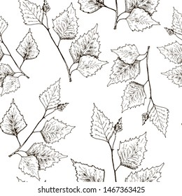 Birch leaves pattern. Hand drawn black birch tree branches and birch leaves on white background. Sketch style backdrop.