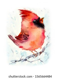 Bird cardinal on a branch. Pattern with bird. Watercolor hand drawn illustration