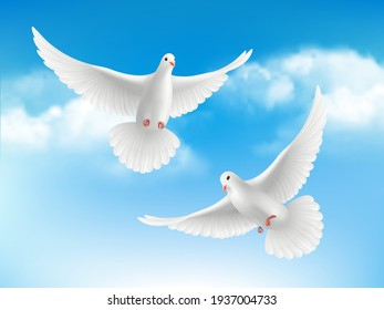 Bird in clouds. Flying white pigeons in blue sky peaceful religion concept with realistic birds background