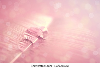 Bird feather with transparent water drop on blurred macro background. Bokeh and sparkle, airy, glamorous 3d render illustration