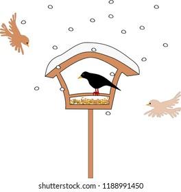 Bird feeding in wintertime