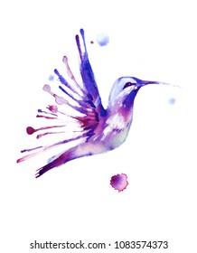 bird hummingbird and streaks and watercolor stains illustration