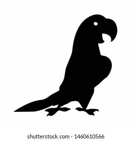 bird of icon design symbol