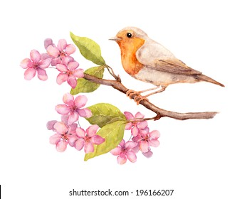 Bird on spring branch with blooming flowers and leaves. Watercolor art