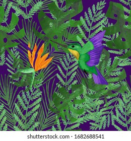 bird of paradise. Watercolor colibri and strelitzia on tropical leaves on violet background. Summer pattern.