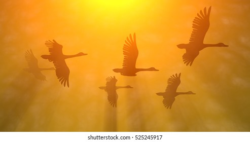 Birds, geese flying in glowing rays of golden orange yellow sun light. 3d render