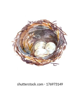 Birds nest with egg - hand watercolour painting