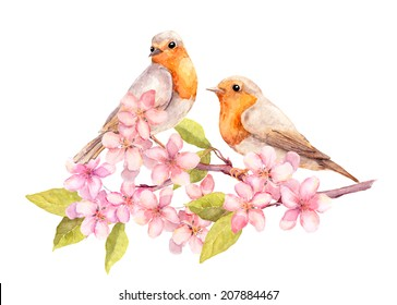 Birds on blossom branch with flowers. Watercolour