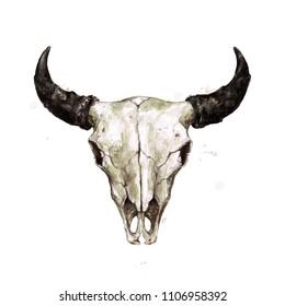 Bison Skull. Watercolor Illustration.