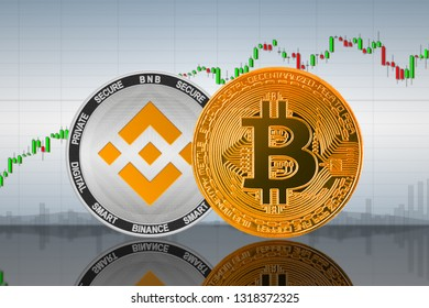 Bitcoin (BTC) and Binance Coin (BNB) coins on the background of the chart; bitcoin and binance cryptocurrency; crypto exchange. 3d illustration