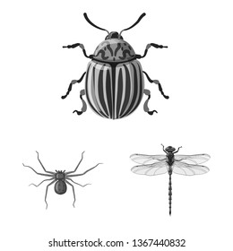 bitmap design of insect and fly sign. Set of insect and element stock symbol for web.